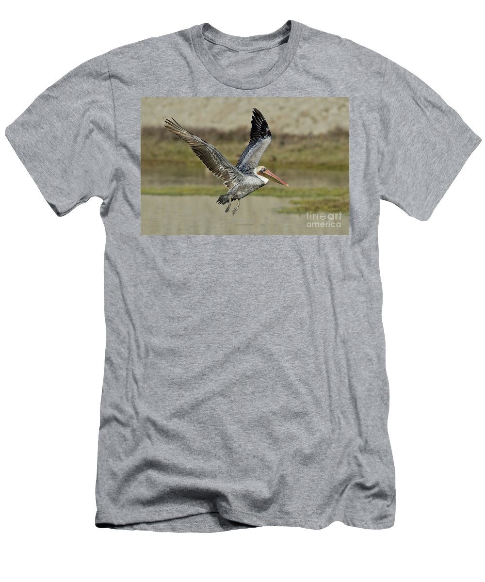 Brown Pelican Men's T-Shirt (Athletic Fit) featuring the photograph Brown Pelican by Anthony Mercieca