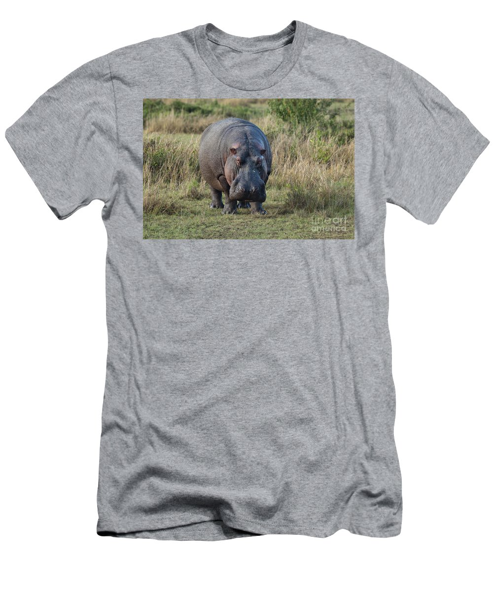 Africa Men's T-Shirt (Athletic Fit) featuring the photograph Hippopotamus by John Shaw