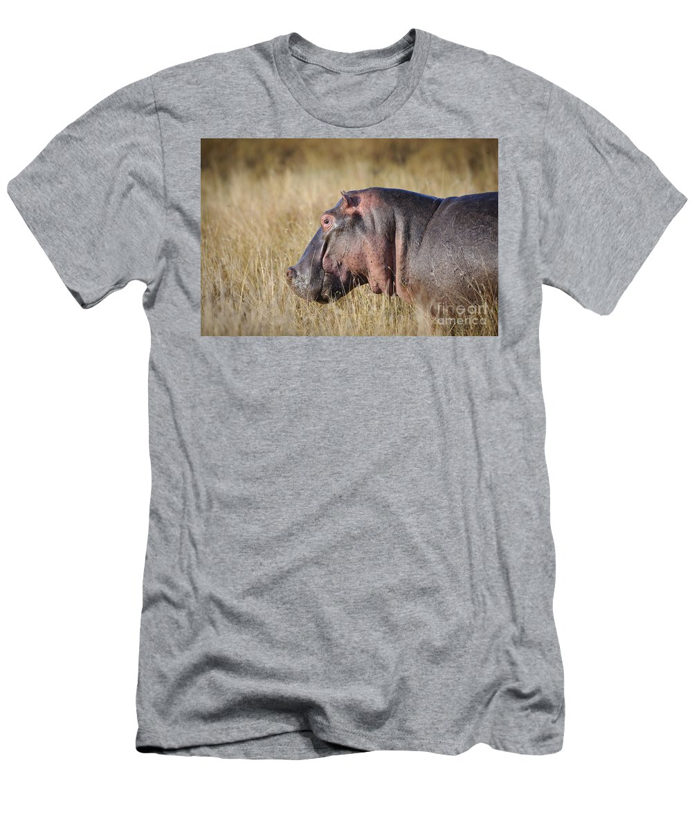 African Fauna Men's T-Shirt (Athletic Fit) featuring the photograph Hippopotamus by John Shaw