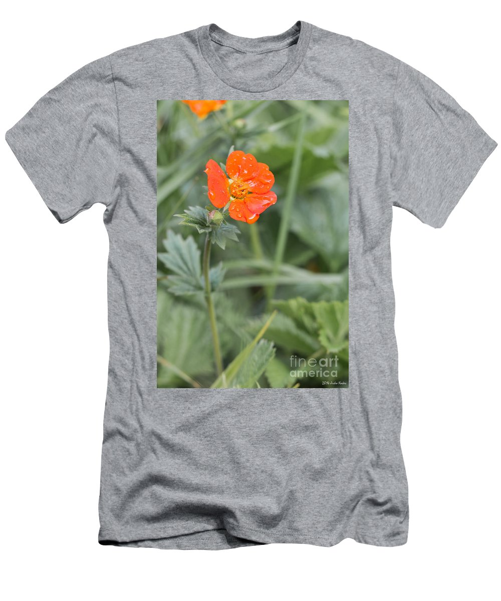 Bulgaria Men's T-Shirt (Athletic Fit) featuring the photograph Scarlet Avens Orange Wild Flower by Jivko Nakev