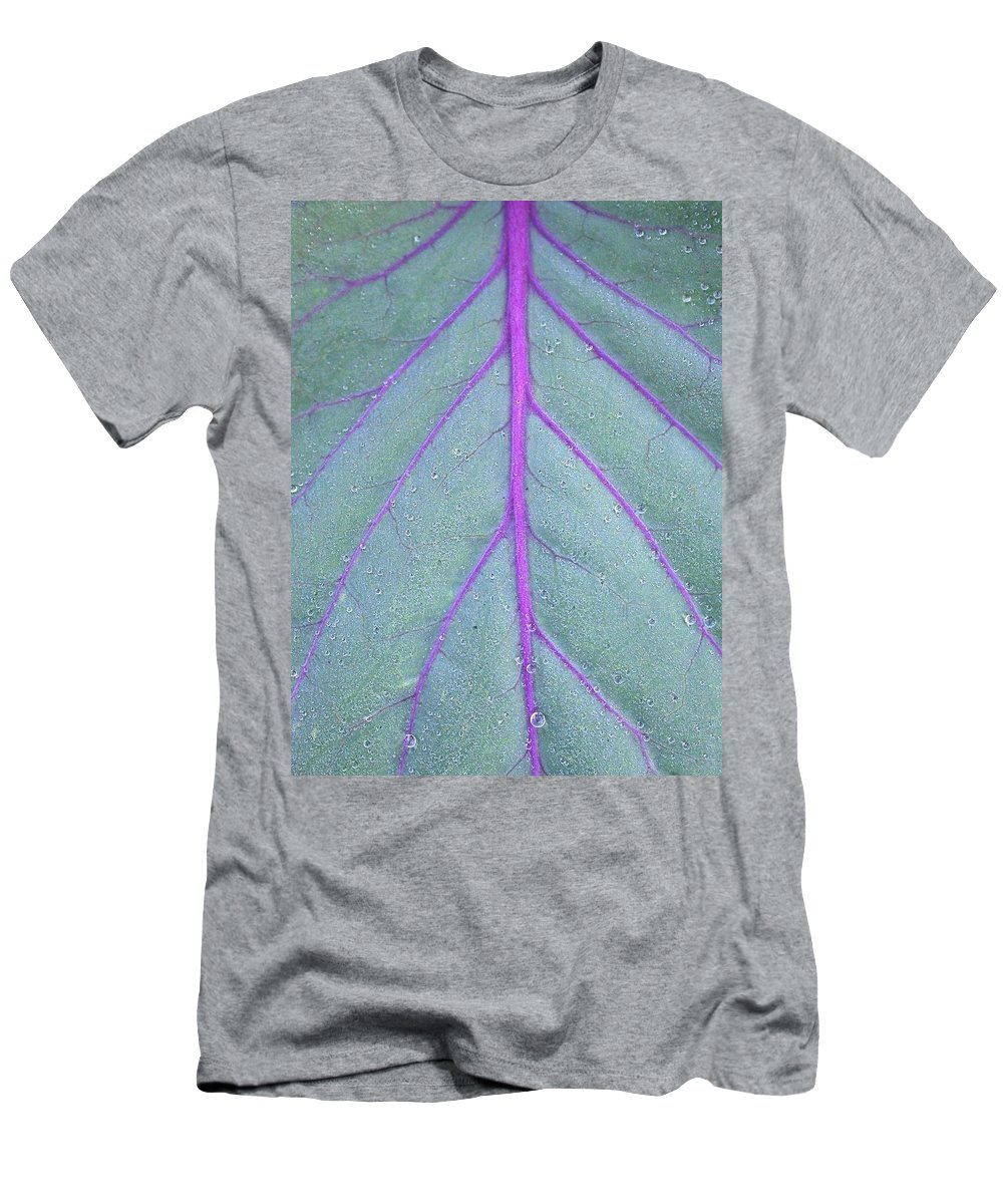 Kale Gets A Close-up Men's T-Shirt (Athletic Fit) featuring the photograph A Closer Look by Cynthia Wallentine