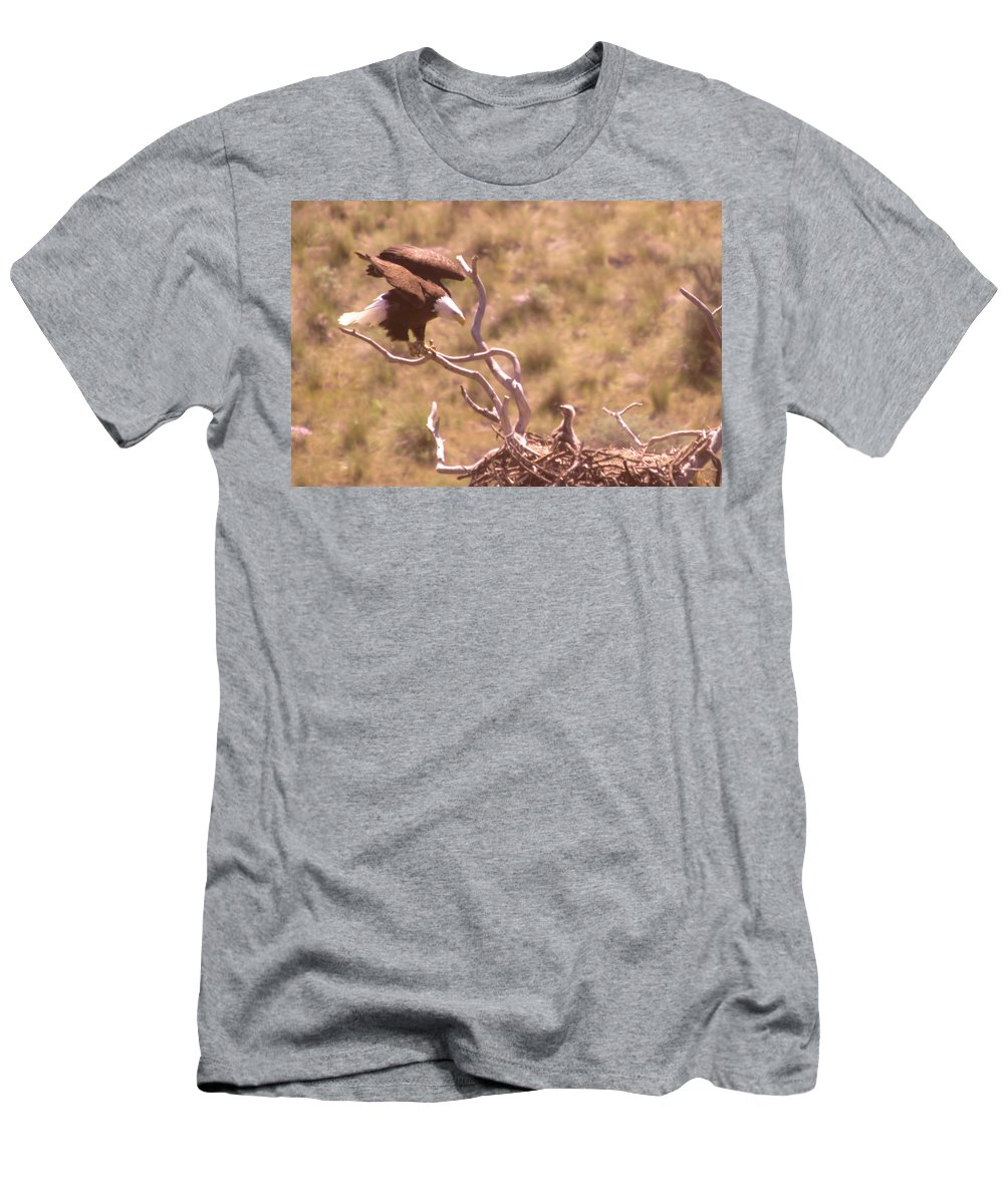 Eagles Men's T-Shirt (Athletic Fit) featuring the photograph Adult Eagle With Eaglet by Jeff Swan