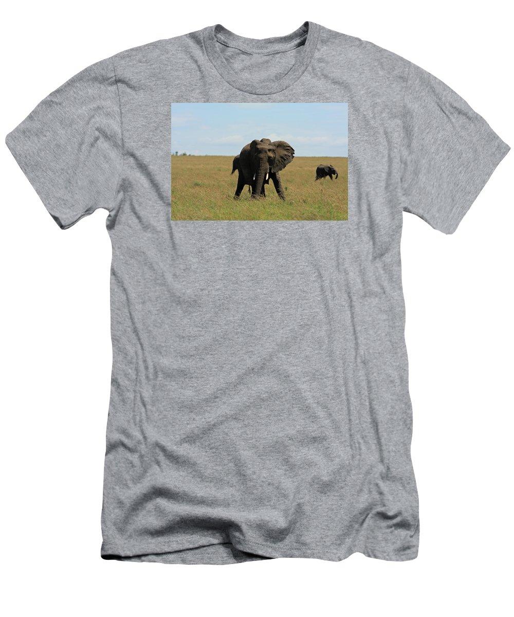 Elephant Men's T-Shirt (Athletic Fit) featuring the photograph African Elephant Masai Mara Kenya by Aidan Moran