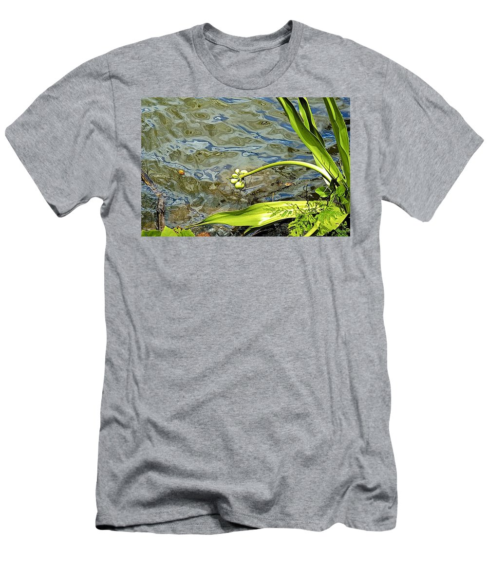 Plant Men's T-Shirt (Athletic Fit) featuring the photograph Along The River by Barbara Zahno