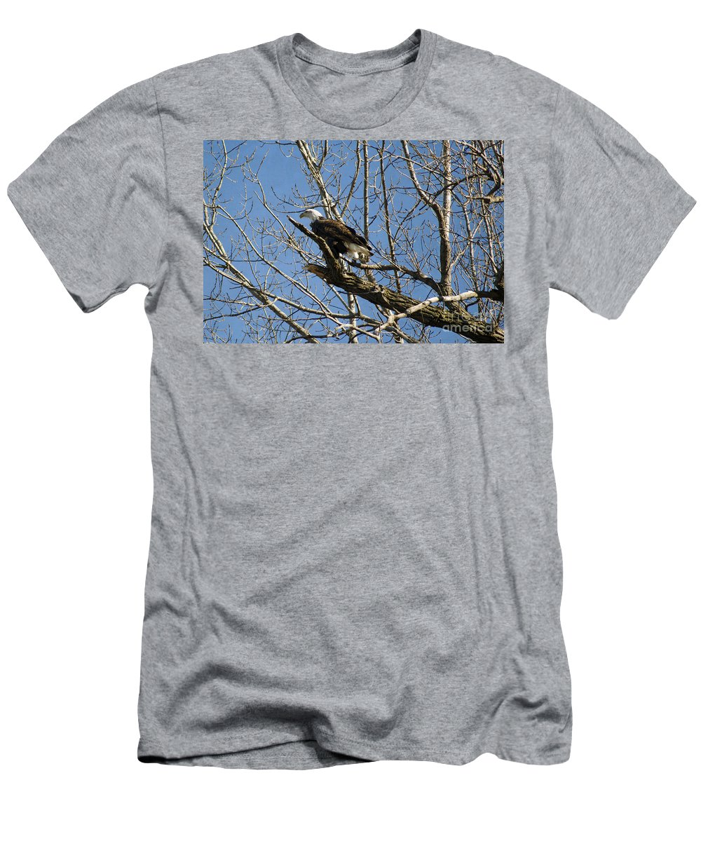 American Bald Eagle In Illinois Men's T-Shirt (Athletic Fit) featuring the photograph American Bald Eagle In Illinois by Luther Fine Art