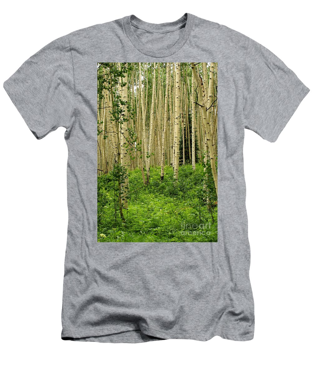 Aspen Men's T-Shirt (Athletic Fit) featuring the photograph Aspen Summer by Kelly Black