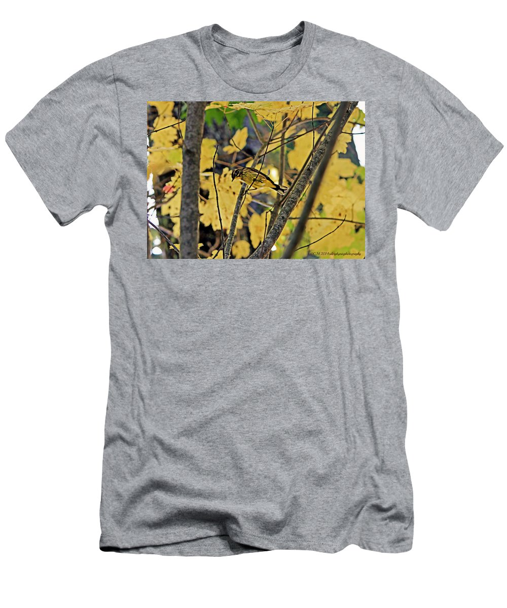 Golden Finch Photography Men's T-Shirt (Athletic Fit) featuring the photograph Autumn Treasure by Catherine Melvin