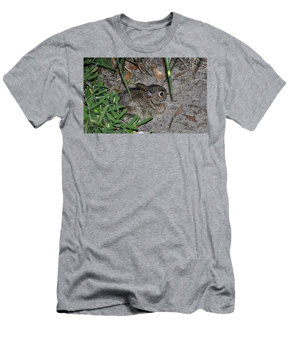 Animals Men's T-Shirt (Athletic Fit) featuring the photograph Baby Bunny by Deborah Good