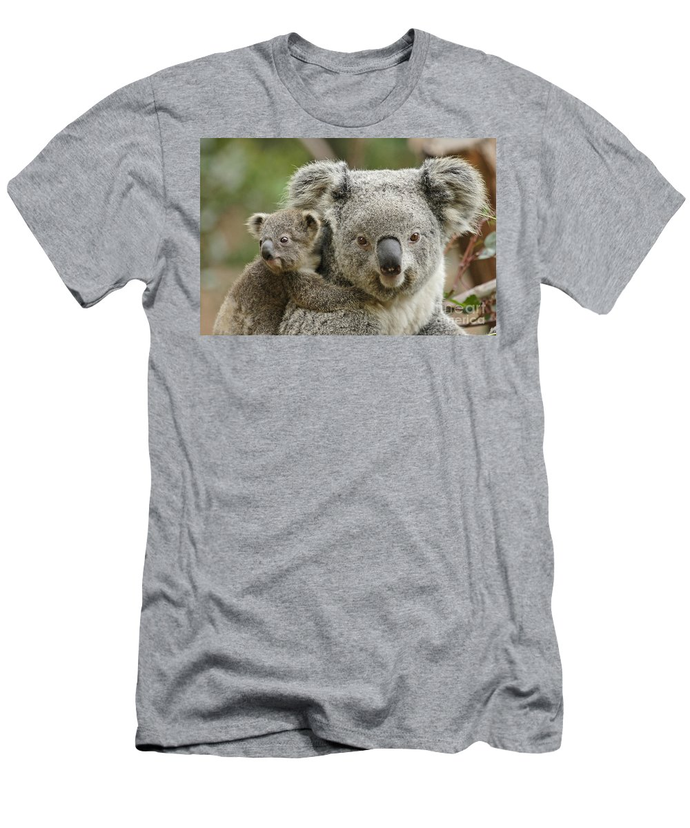Cute Men's T-Shirt (Athletic Fit) featuring the photograph Baby Koala With Mom by Traci Law