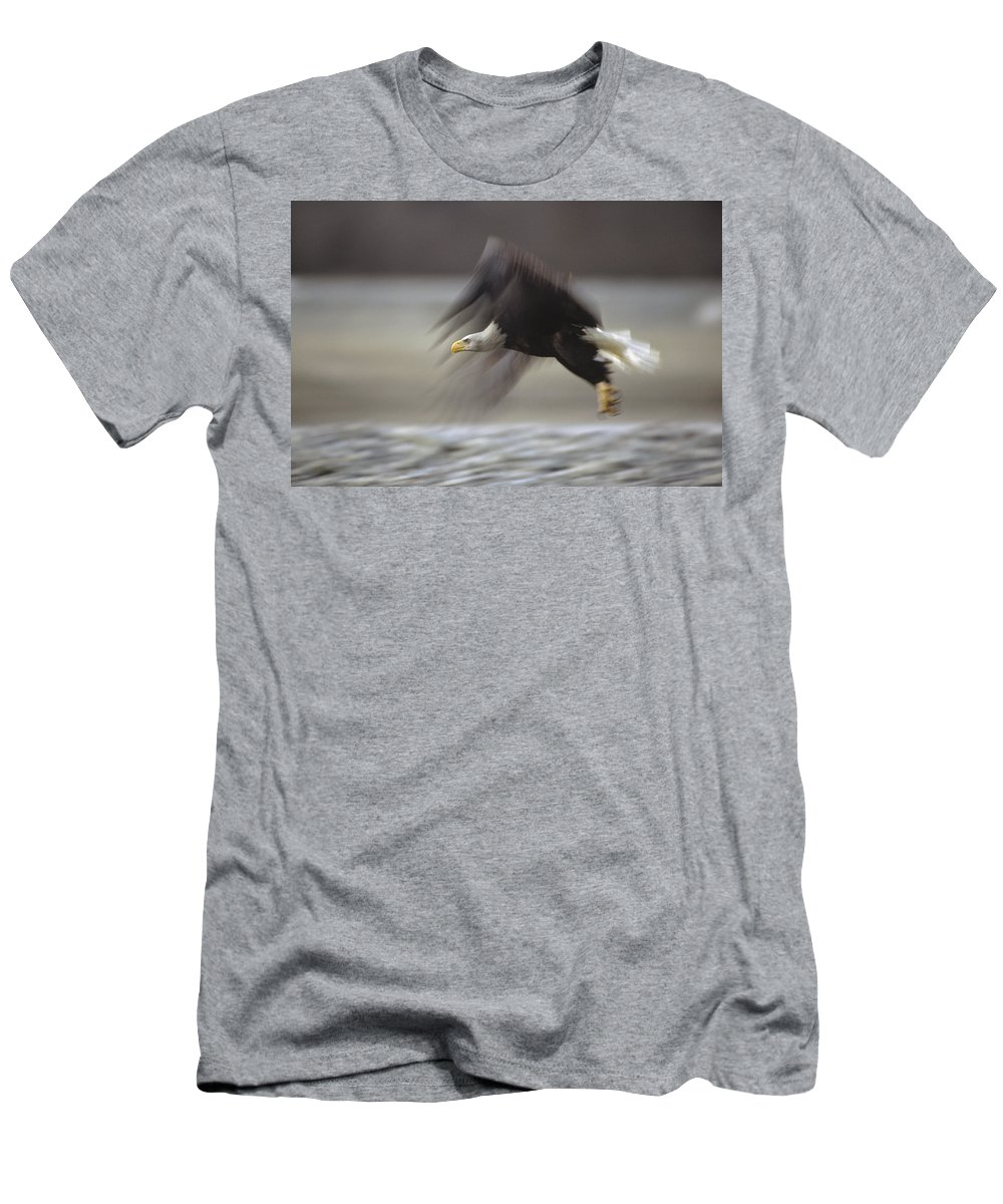 Feb0514 Men's T-Shirt (Athletic Fit) featuring the photograph Bald Eagle Flying Alaska by Gerry Ellis