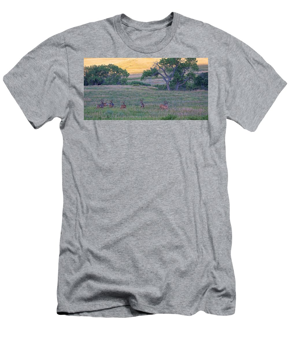 Mule Deer Herd Photograph Men's T-Shirt (Athletic Fit) featuring the photograph Band Of Brothers by Jim Garrison