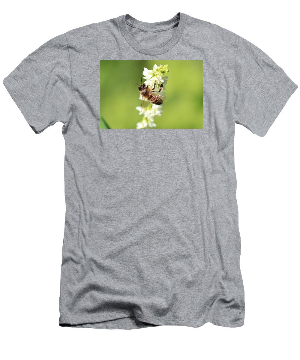 Honeybee Men's T-Shirt (Athletic Fit) featuring the photograph Beautiful Honeybee by Lucinda VanVleck