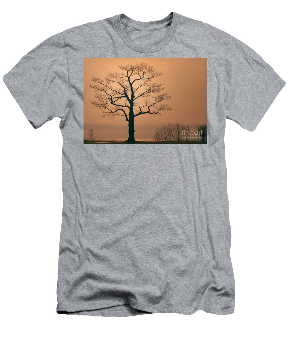 Sunset Men's T-Shirt (Athletic Fit) featuring the photograph Big Brother by Robert Marleau
