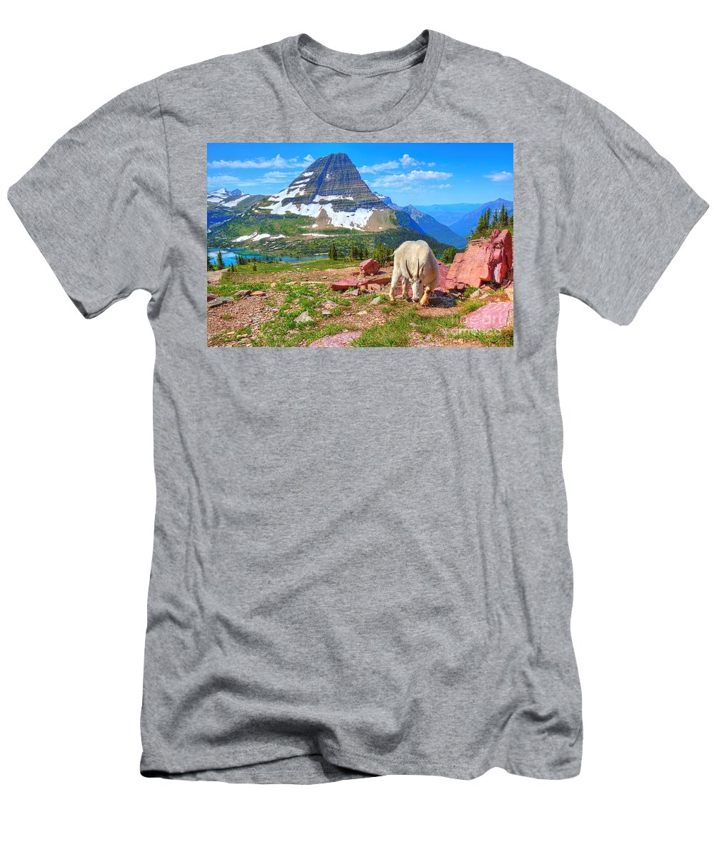 Mountain Goat Men's T-Shirt (Athletic Fit) featuring the photograph Billy Bearhat by James Anderson