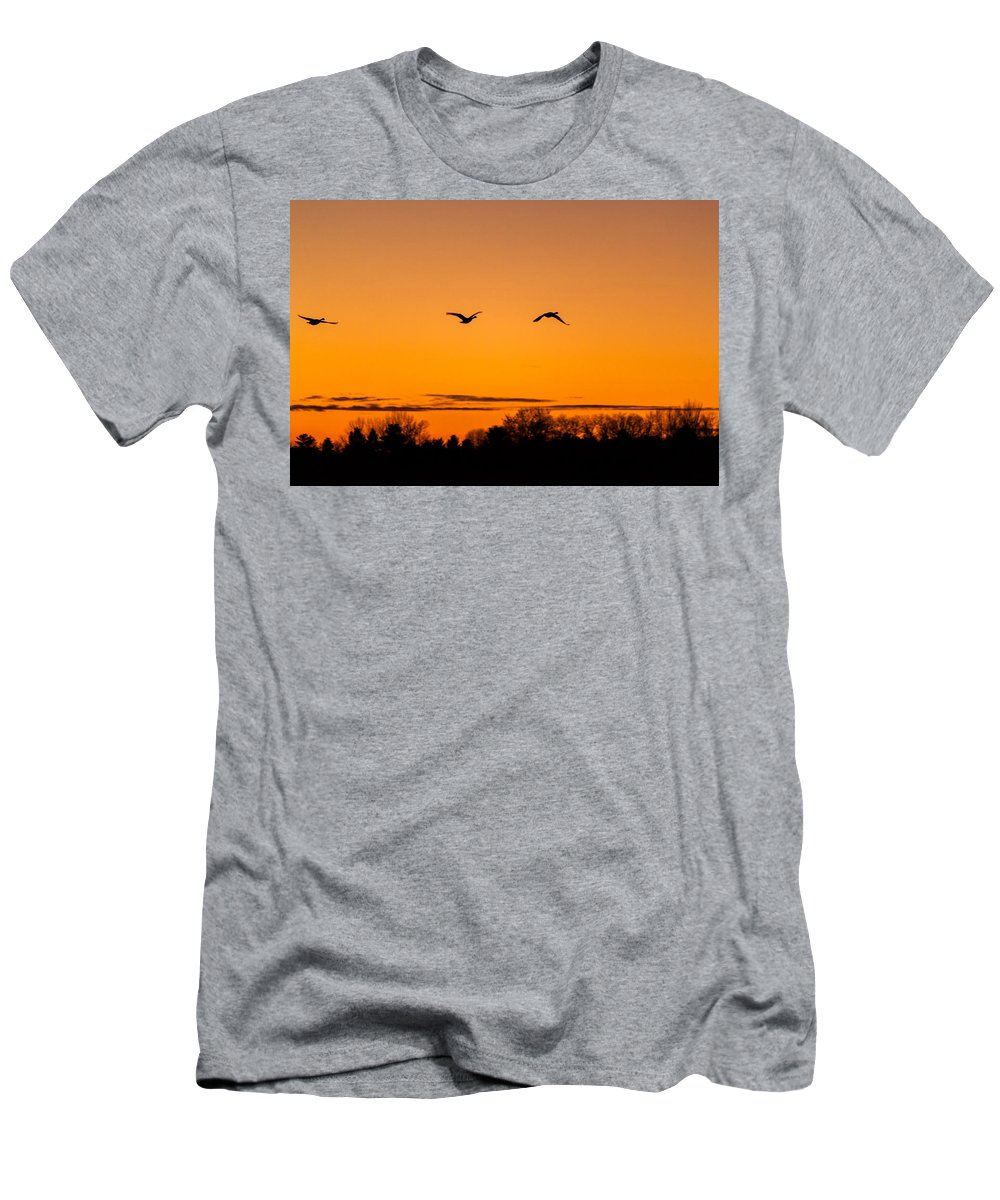 Goose Men's T-Shirt (Athletic Fit) featuring the photograph Birds Of A Feather by Thomas Sellberg