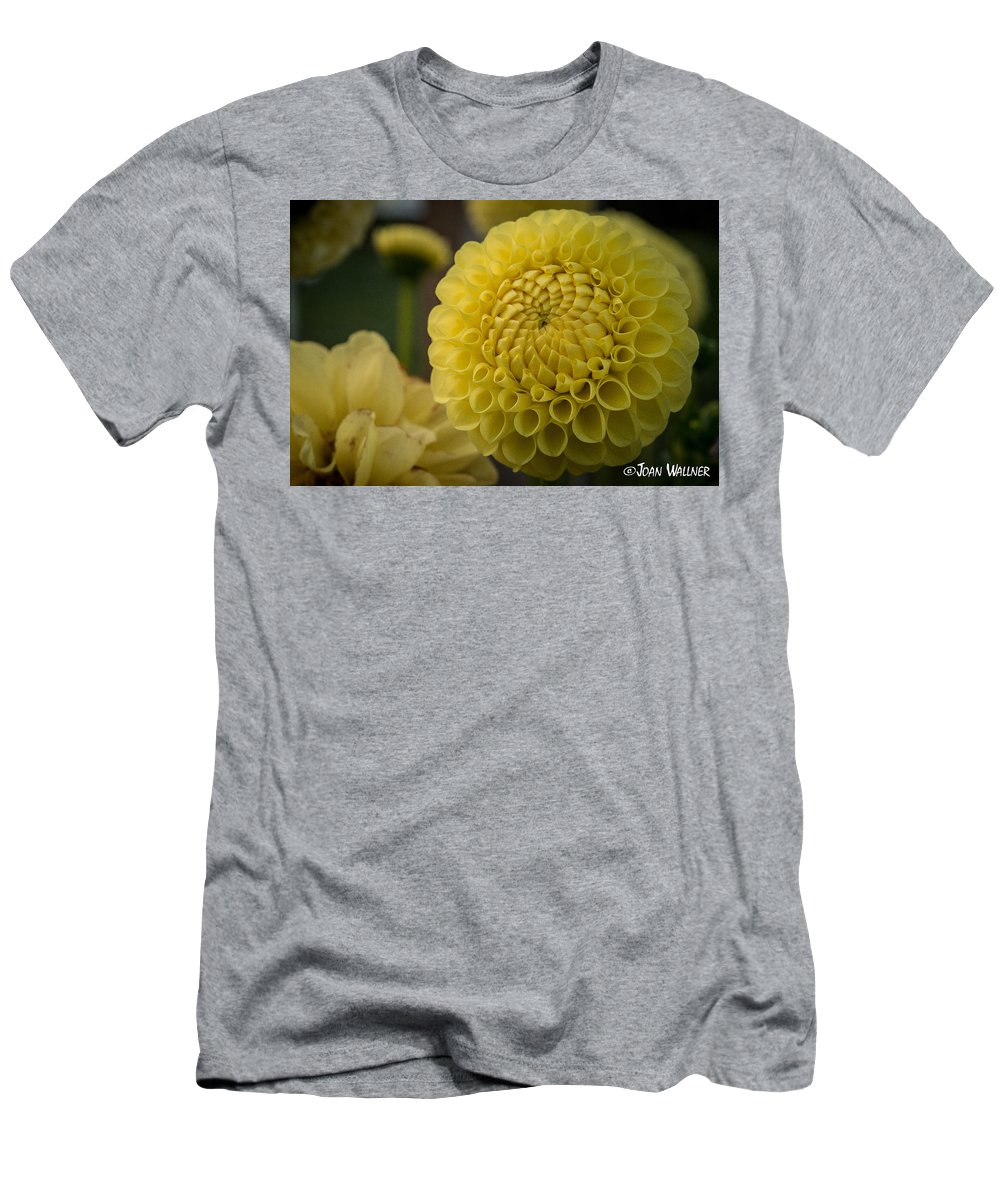 Dahlia Men's T-Shirt (Athletic Fit) featuring the photograph Blazing Yellow Dahlia by Joan Wallner