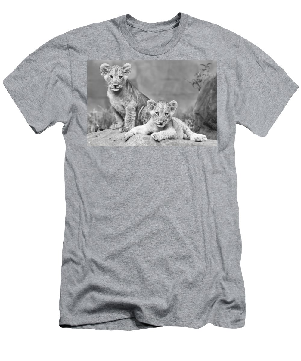 Wildlife Men's T-Shirt (Athletic Fit) featuring the photograph Brothers by Linda D Lester