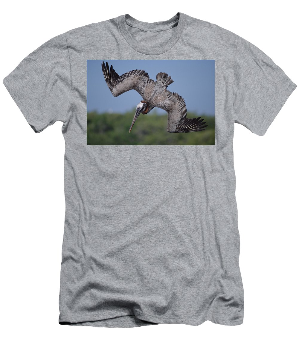Feb0514 Men's T-Shirt (Athletic Fit) featuring the photograph Brown Pelican Diving Academy Bay by Tui De Roy