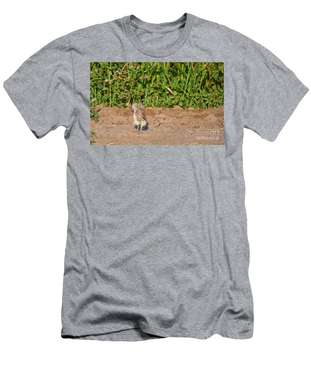 Owl Men's T-Shirt (Athletic Fit) featuring the photograph Burrowing Owl IIi by Donna Greene