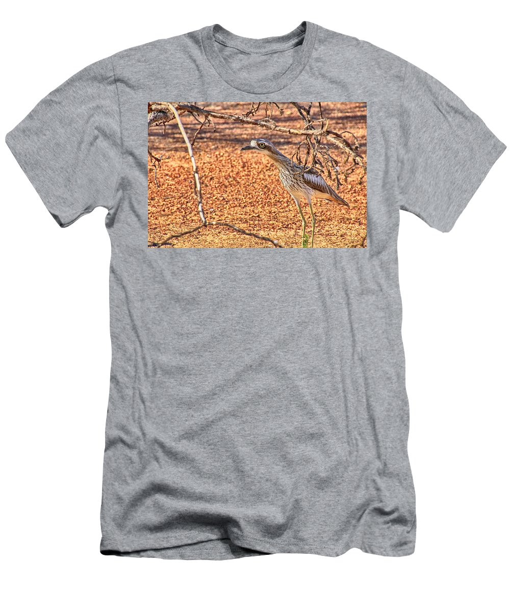 Bush Stone Curlew Men's T-Shirt (Athletic Fit) featuring the photograph Bush Stone Curlew by Douglas Barnard