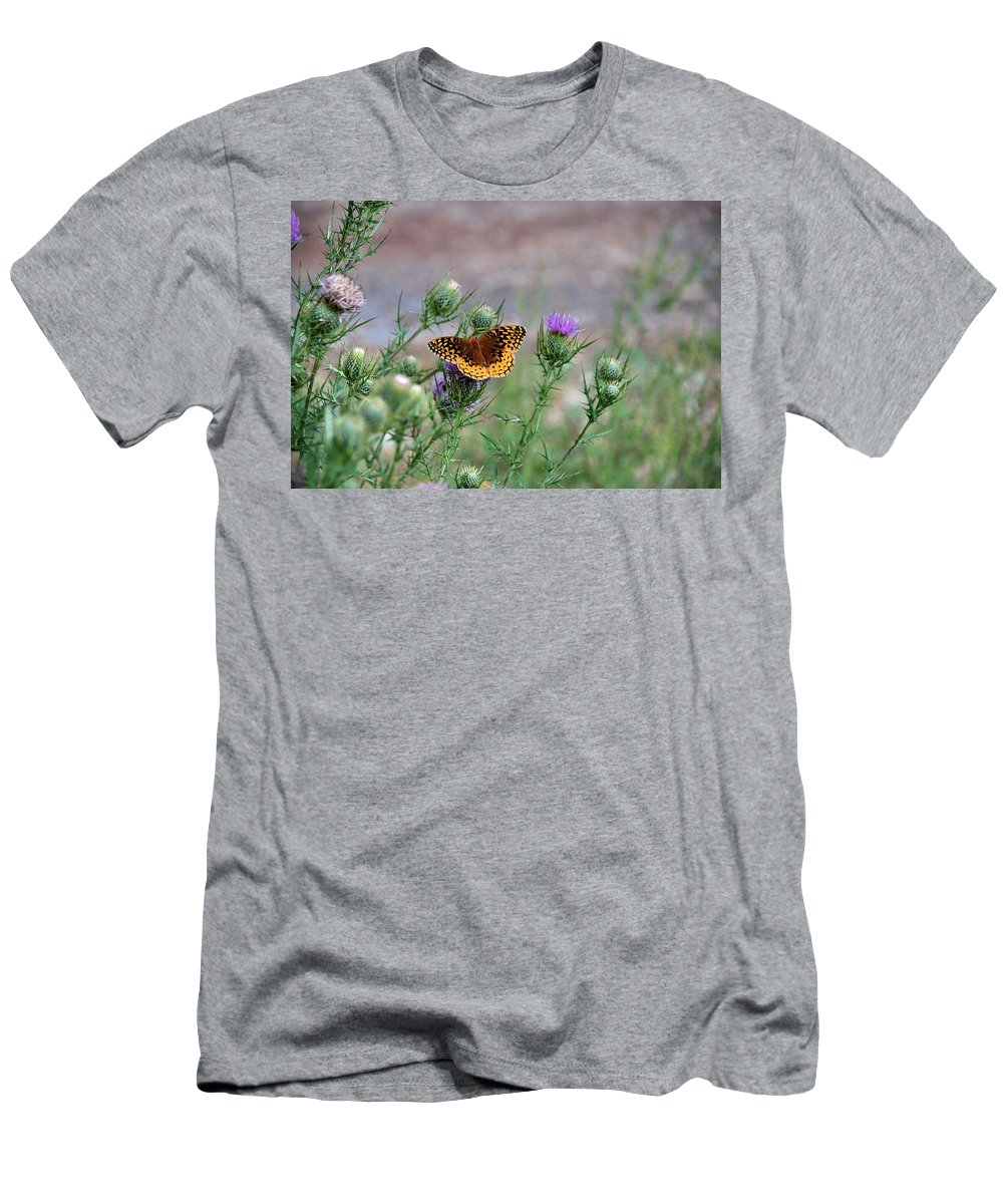 Butterfly Men's T-Shirt (Athletic Fit) featuring the photograph Butterfly On Thistle by Francie Davis