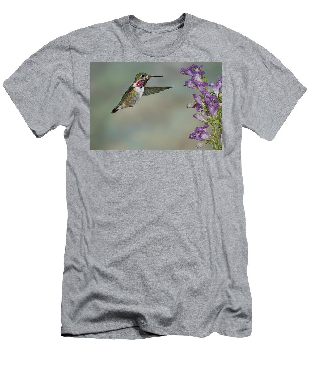 Action Men's T-Shirt (Athletic Fit) featuring the photograph Calliope Hummingbird by Jack Milchanowski