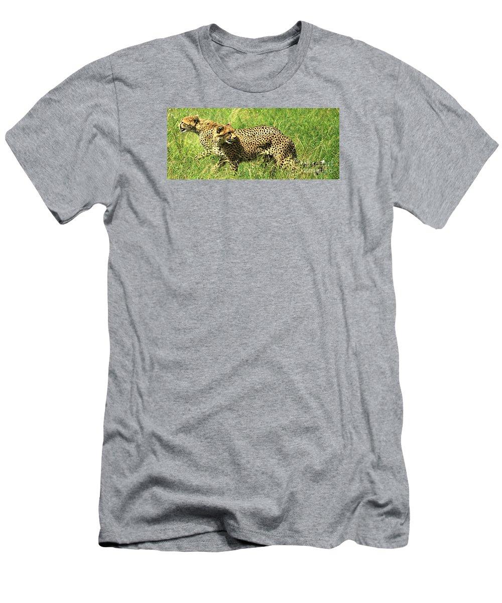 Acinonyx Jubatus Men's T-Shirt (Athletic Fit) featuring the photograph Cheetahs Running by Deborah Benbrook