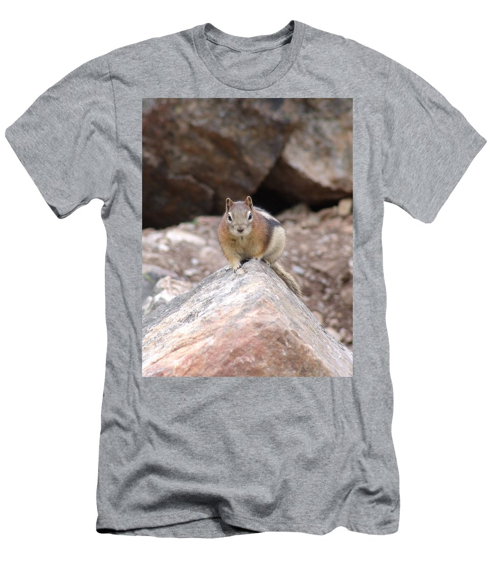Chipmunk Men's T-Shirt (Athletic Fit) featuring the photograph Chipmunk Gaze by Ian Mcadie