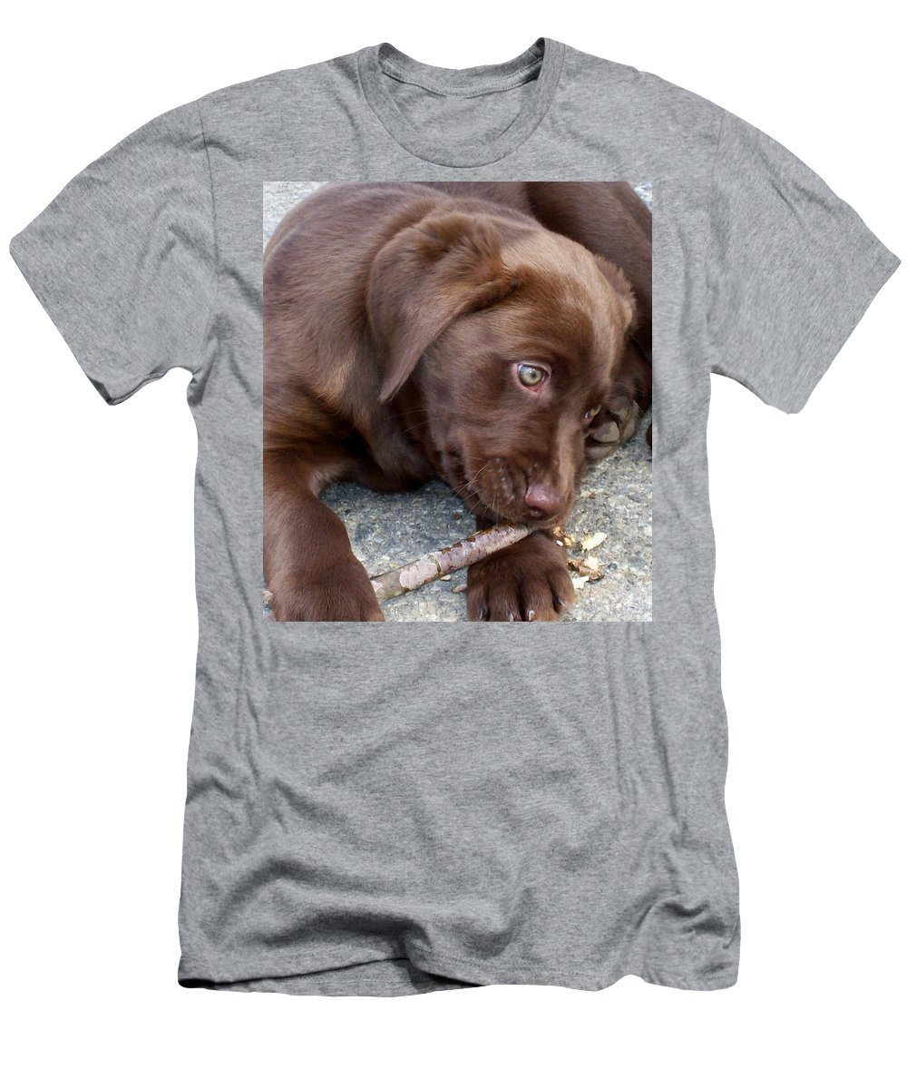 Men's T-Shirt (Athletic Fit) featuring the photograph Chocolate Lab Pup by Barbara S Nickerson