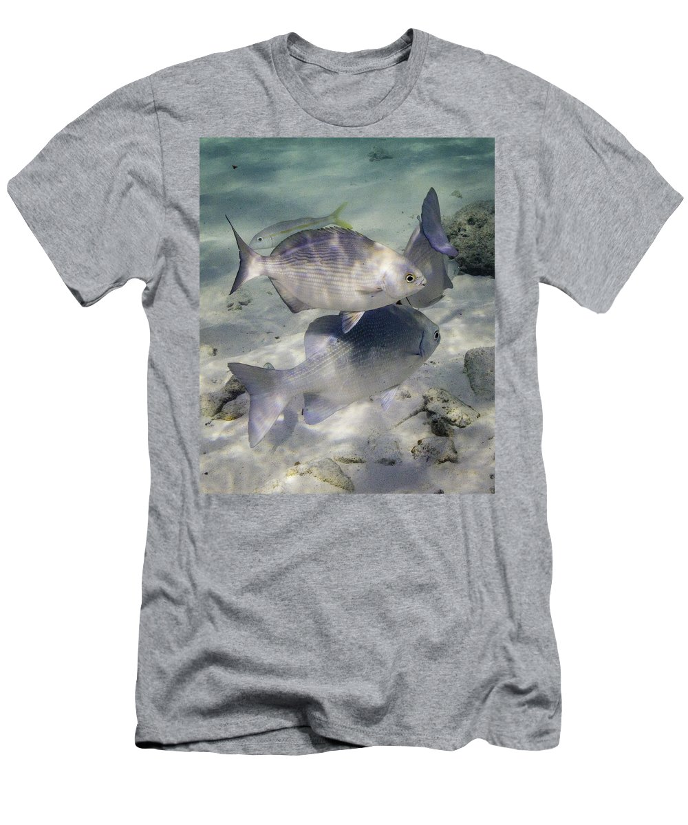 Fish Men's T-Shirt (Athletic Fit) featuring the photograph Chubbin' Around by Lynne Browne