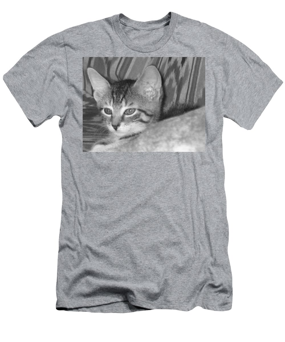 Kitten Men's T-Shirt (Athletic Fit) featuring the photograph Comfy Kitten by Pharris Art