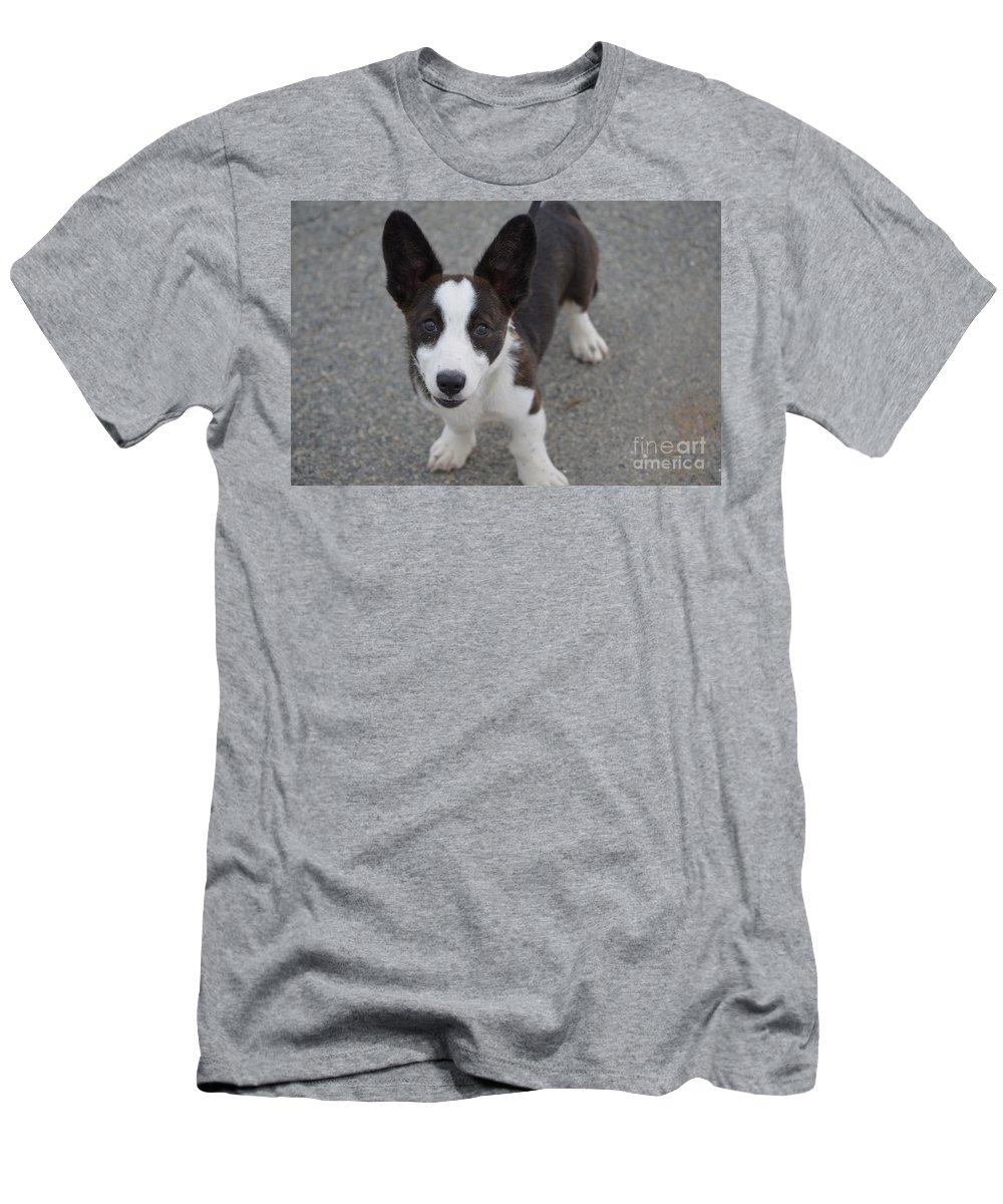 Corgi T-Shirt featuring the photograph Corgi Puppy by DejaVu Designs