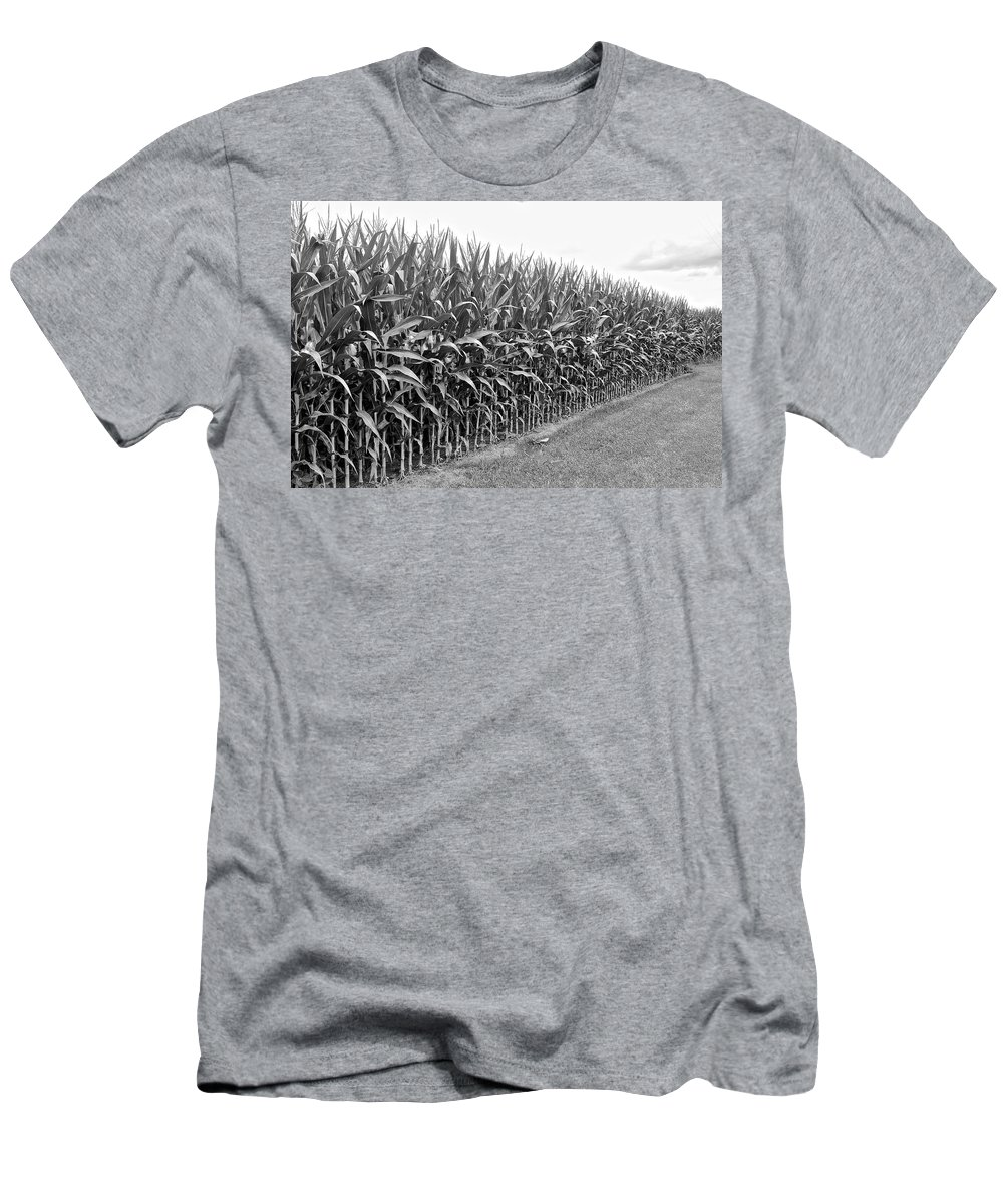 Cornfield Men's T-Shirt (Athletic Fit) featuring the photograph Cornfield Black And White by Frozen in Time Fine Art Photography