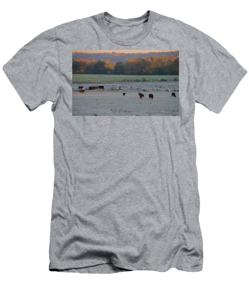 Cows At Sunrise Men's T-Shirt (Athletic Fit) featuring the photograph Cows At Sunrise by Dan Sproul