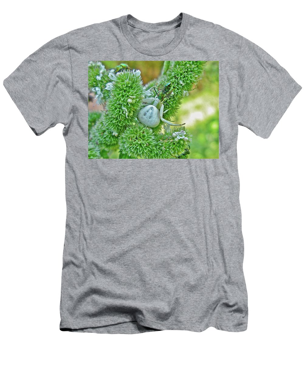 Spider Men's T-Shirt (Athletic Fit) featuring the photograph Crab Spider - Thomisidae by Mother Nature