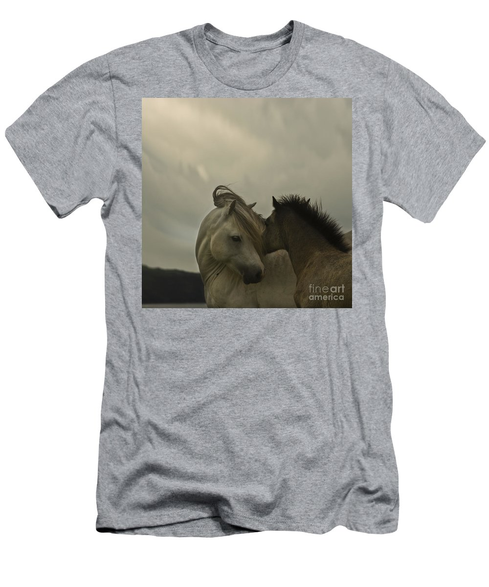 Horses Men's T-Shirt (Athletic Fit) featuring the photograph Cuddle Me by Angel Ciesniarska