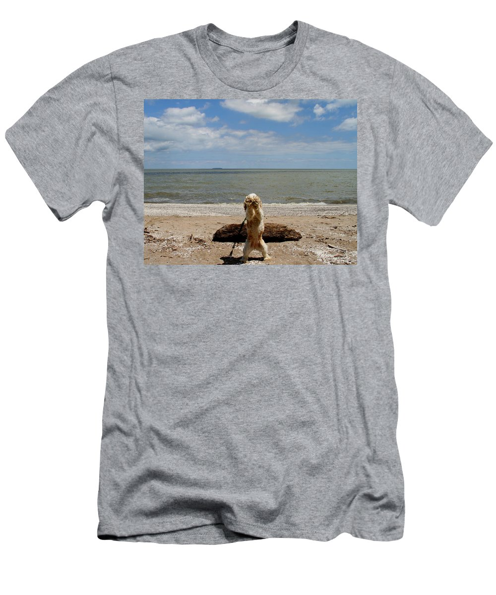 Cute Cocker Spaniel Men's T-Shirt (Athletic Fit) featuring the photograph Cute Cocker Spaniel by Dan Sproul