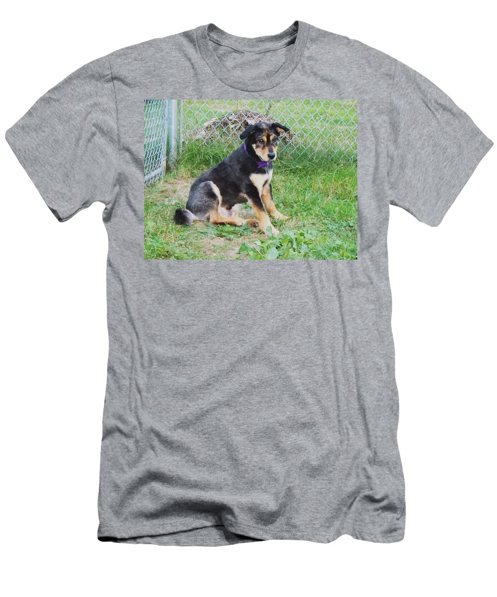 Dog Men's T-Shirt (Athletic Fit) featuring the photograph Cute Kody by Lisa Wormell