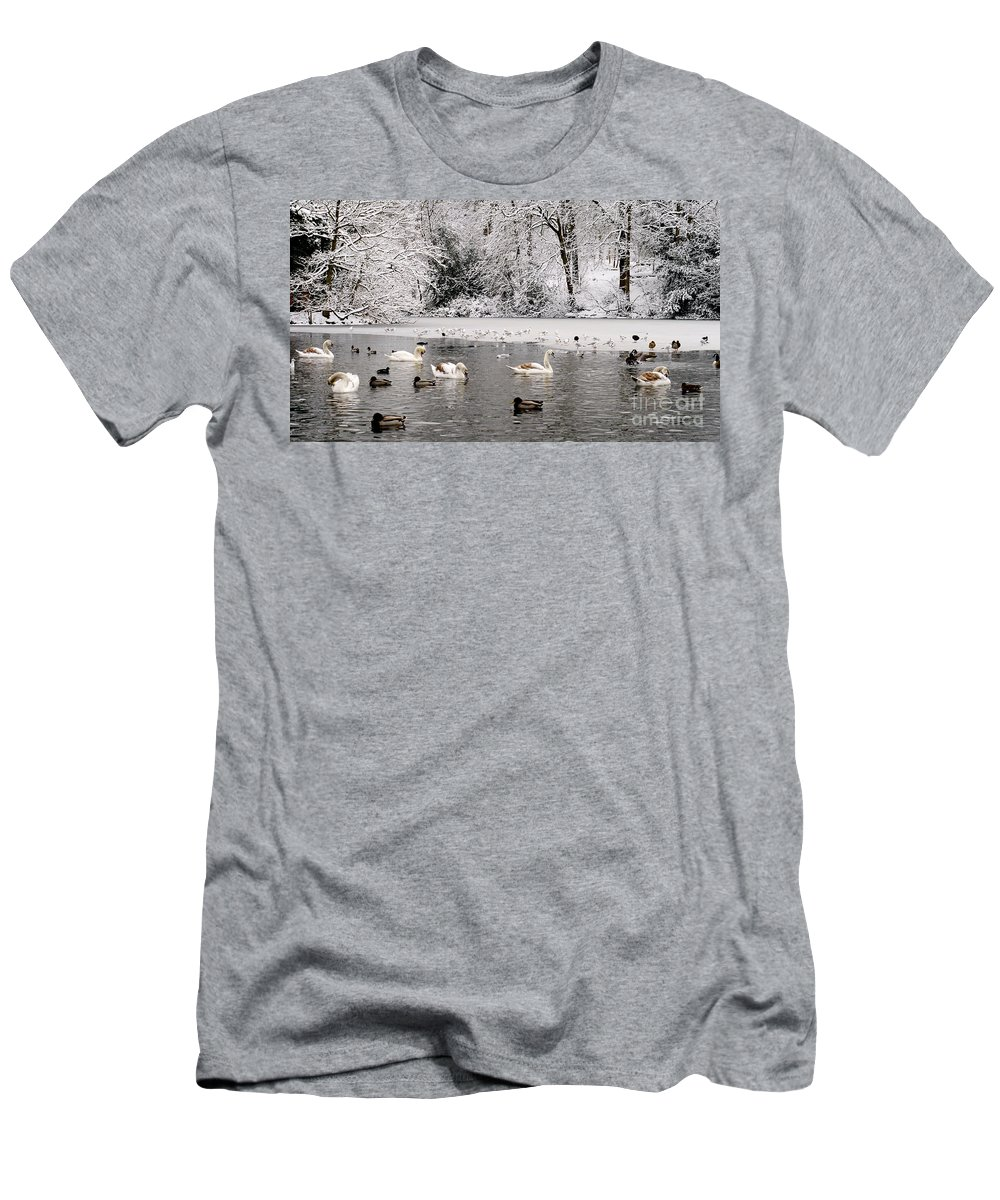 Cygnet Men's T-Shirt (Athletic Fit) featuring the photograph Cygnets In Winter by John Chatterley