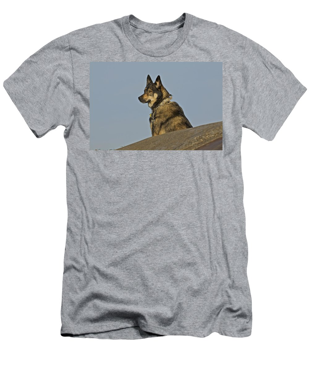 Dog Men's T-Shirt (Athletic Fit) featuring the photograph Dog At Point Bonita 2 by SC Heffner