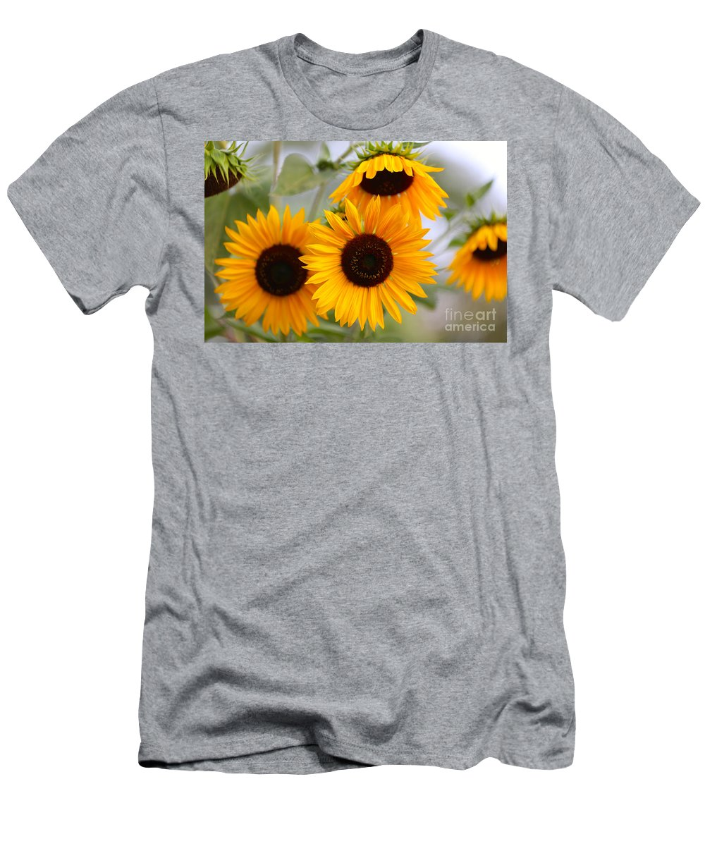 Sunflower Men's T-Shirt (Athletic Fit) featuring the photograph Dreamy Sunflower Day by Carol Groenen