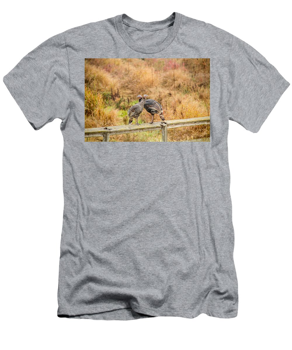 Fall Men's T-Shirt (Athletic Fit) featuring the photograph Fall Turkeys by Brian Williamson