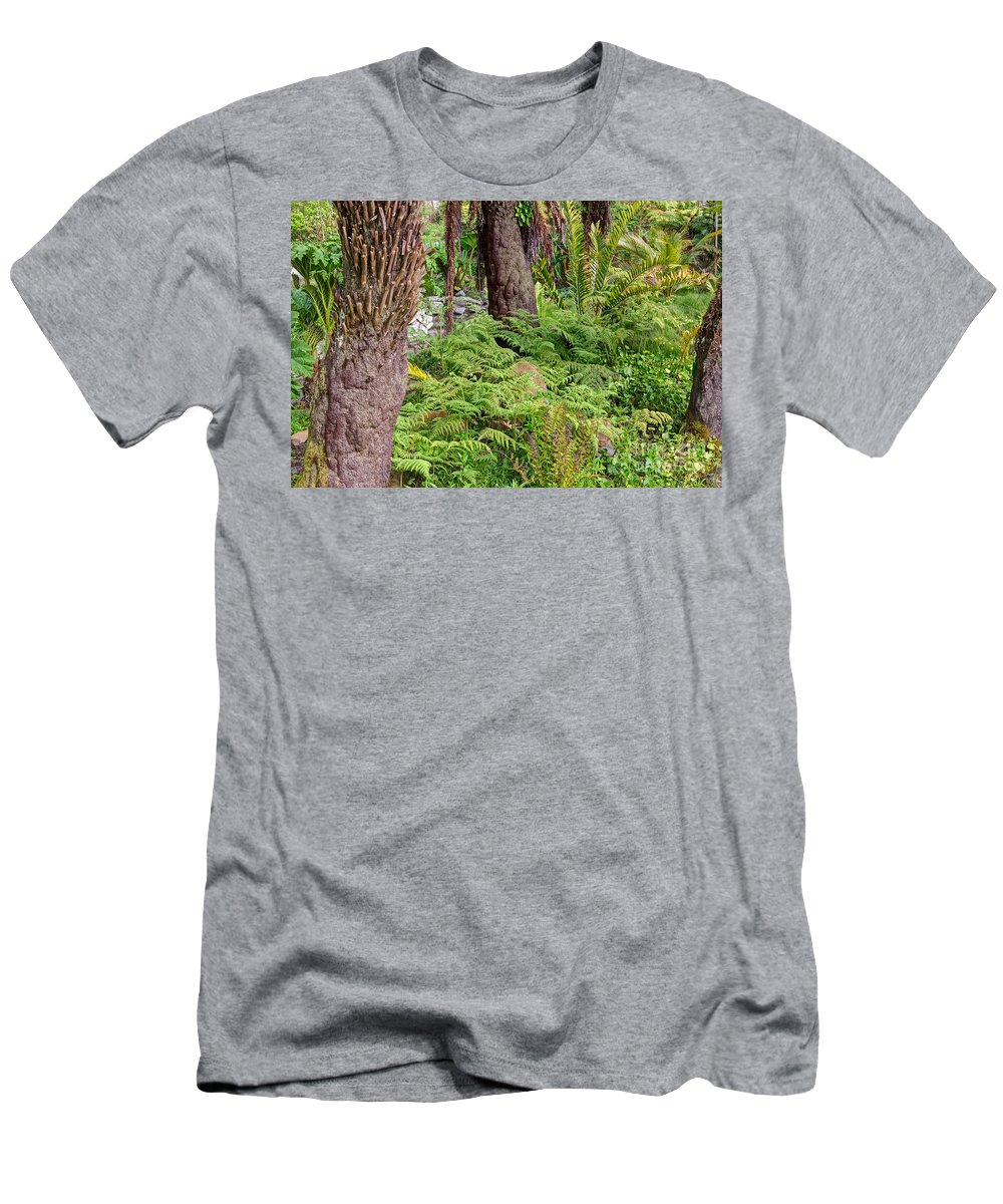 Botanical Garden Men's T-Shirt (Athletic Fit) featuring the photograph Fern Garden by Kate Brown