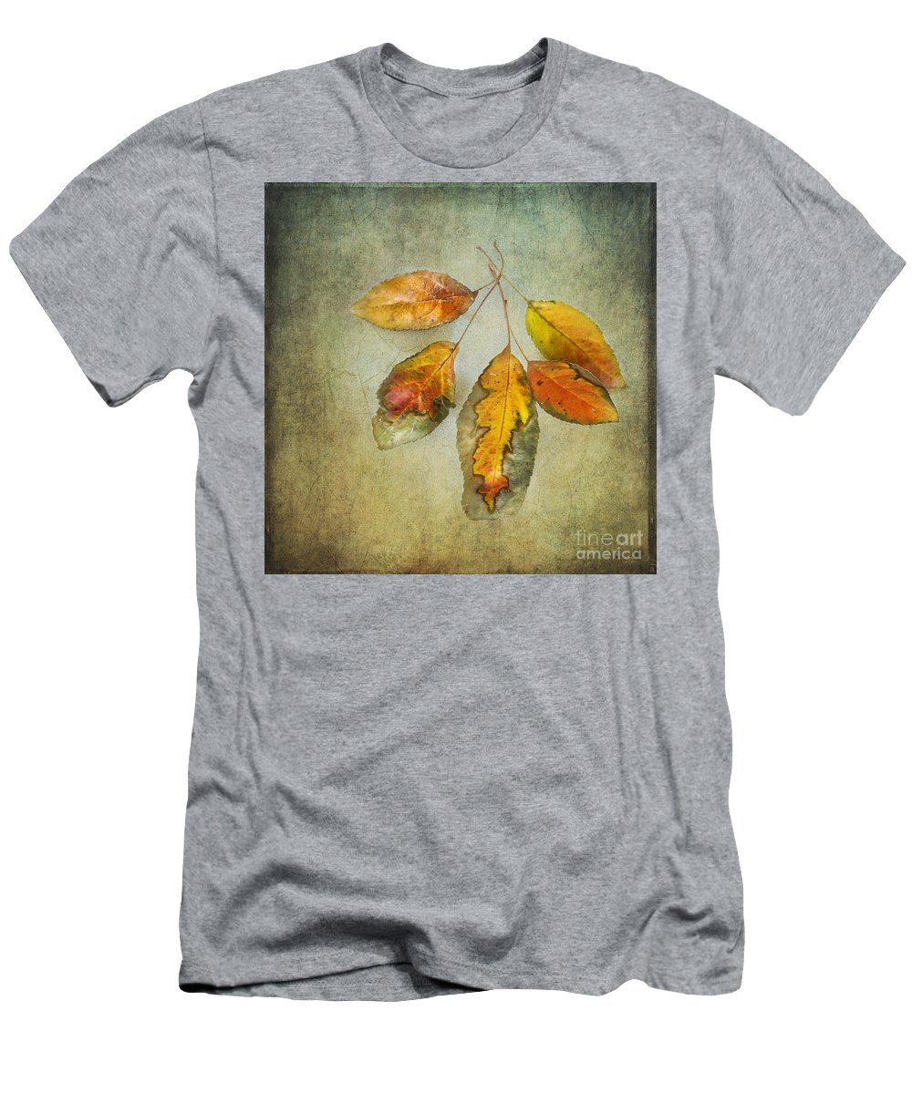 Leaf Men's T-Shirt (Athletic Fit) featuring the photograph Five Autumn Leaves by Betty LaRue
