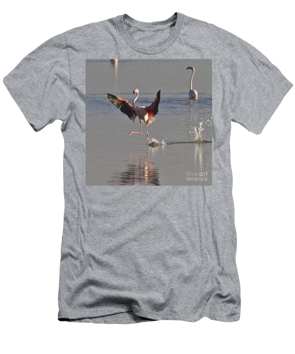 Heiko Men's T-Shirt (Athletic Fit) featuring the photograph Flamingo Dance by Heiko Koehrer-Wagner