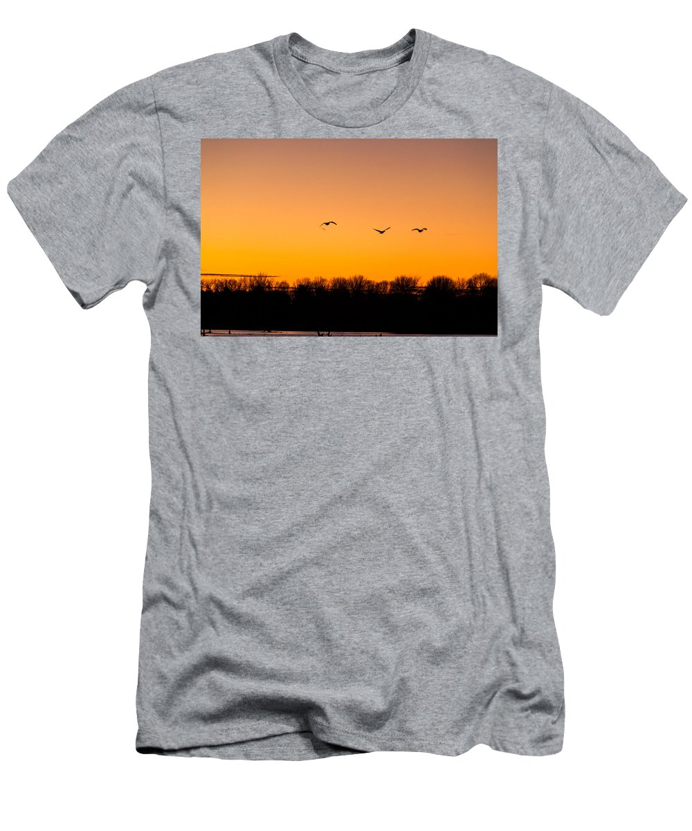 Goose Men's T-Shirt (Athletic Fit) featuring the photograph Flyby by Thomas Sellberg