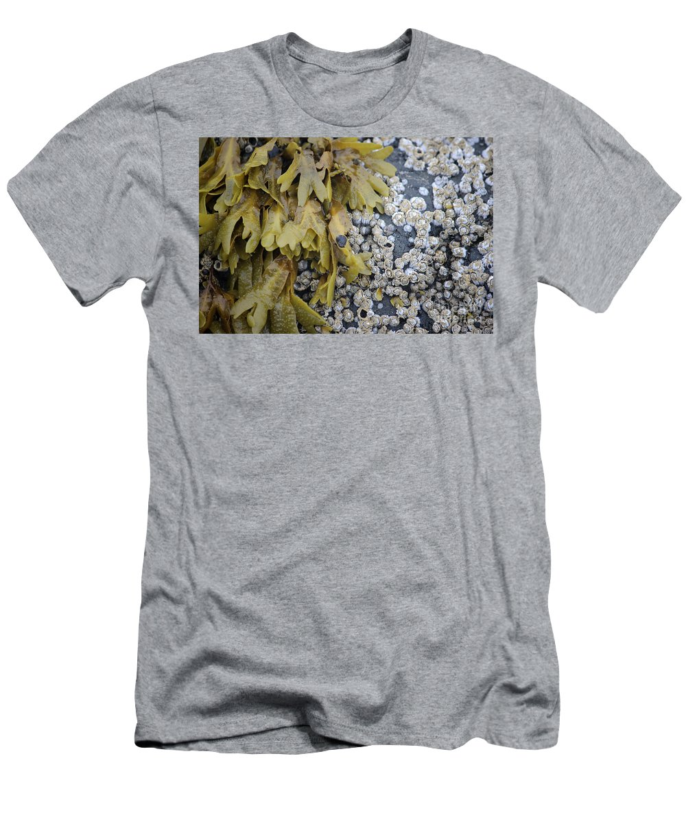 Rock Men's T-Shirt (Athletic Fit) featuring the photograph For Awhile by Stacey May