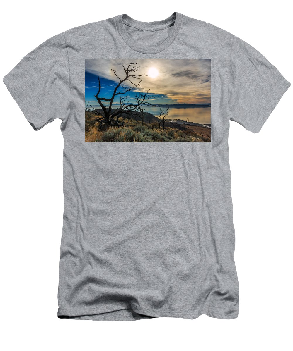 Gigimarie Men's T-Shirt (Athletic Fit) featuring the photograph Frary Trail Trees by Gina Herbert