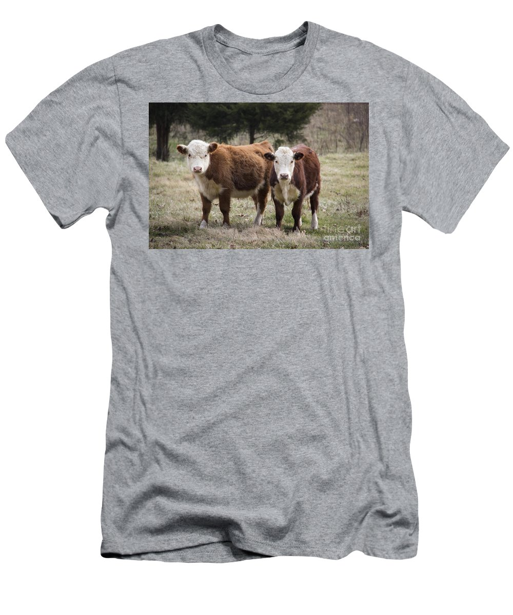 Cow Men's T-Shirt (Athletic Fit) featuring the photograph Frick N Frack by Teresa Mucha
