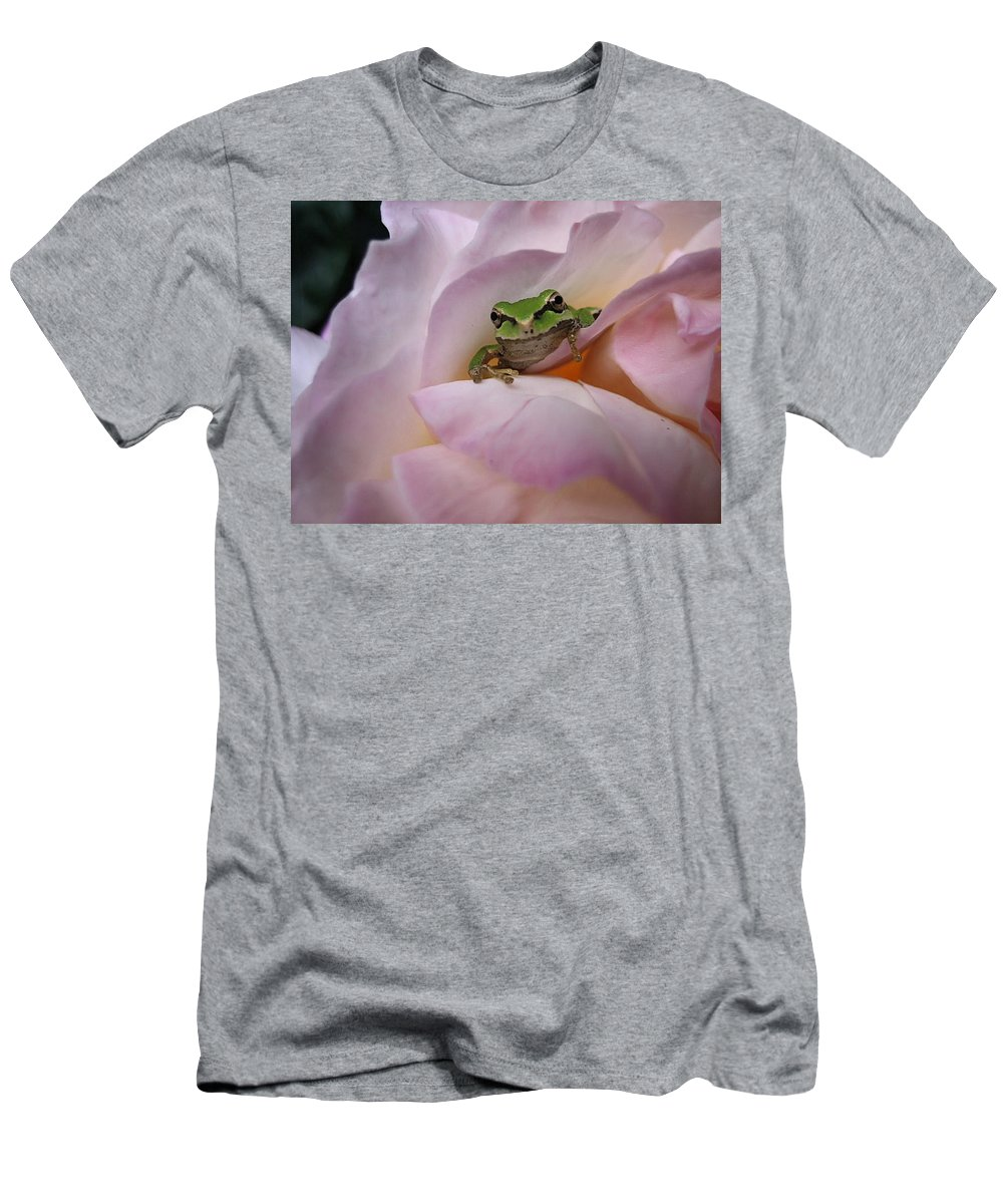 Chorus Frog Men's T-Shirt (Athletic Fit) featuring the photograph Frog And Rose Photo 1 by Cheryl Hoyle